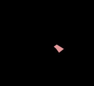 binckhorst
