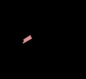 bomenbuurt
