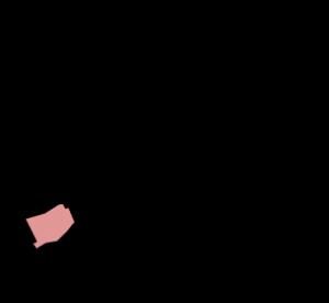 kraayenstein